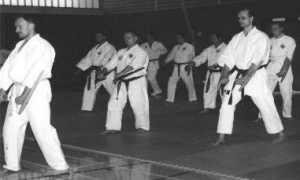 Tonfa-Kata-Training mit J. Mayer